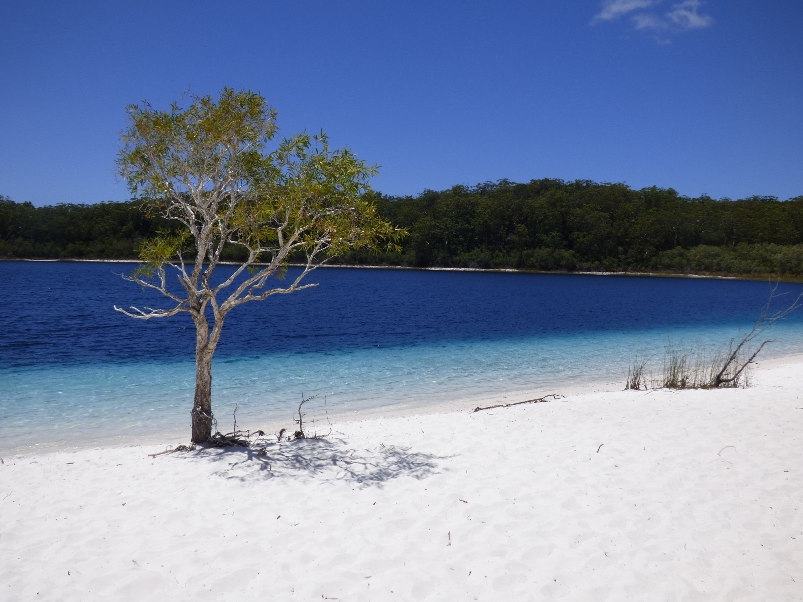 tourameo-reiseplanung-individualreise-australien-rundreise-fraser-island-strand