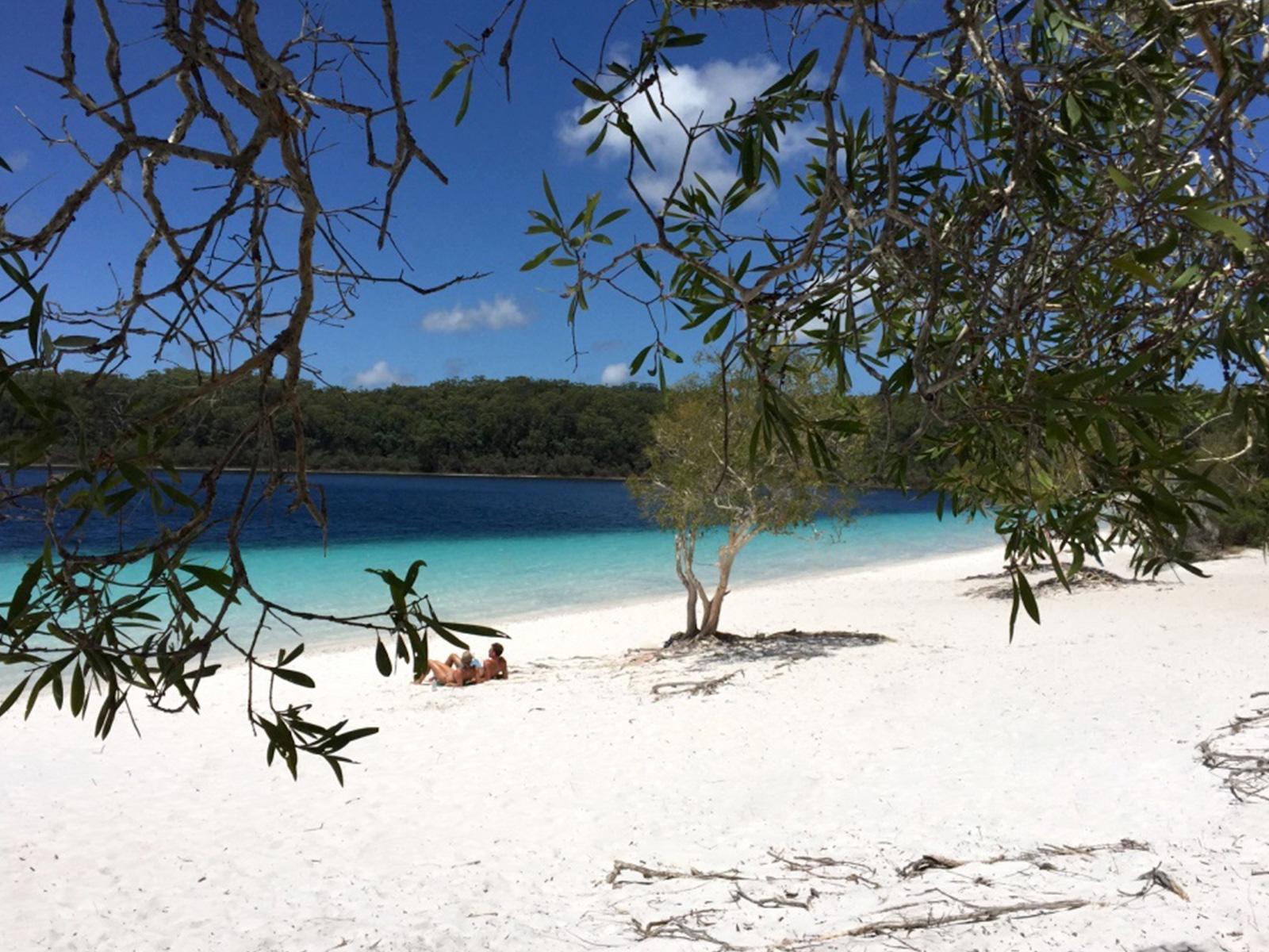 tourameo-reiseplanung-reiseziel-australien-fraser-island
