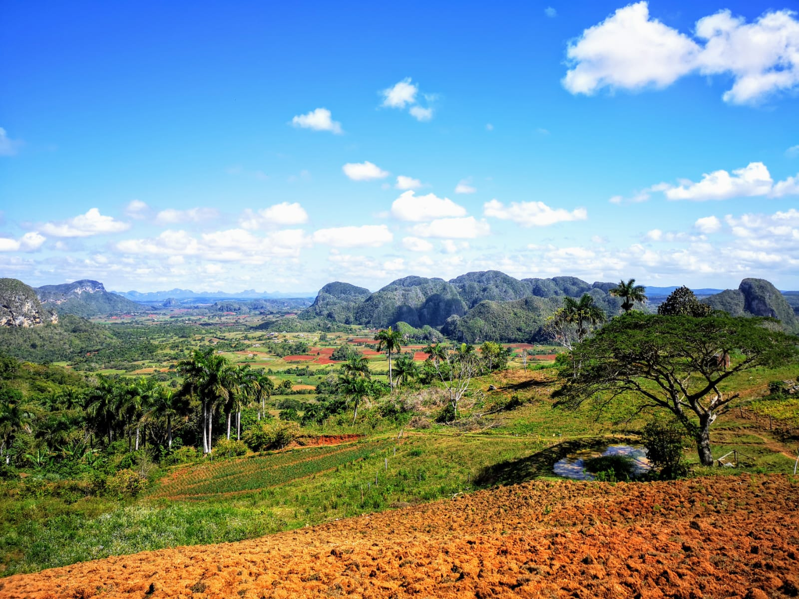tourameo-reiseplanung-reiseziel-kuba-vinales-landschaft